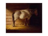 Old Field Horse, by 1856 Gicléedruk van George Caleb Bingham