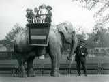 An Indian Elephant, with Keeper, Taking Small Children for a Ride at London Zoo, C.1913 Reproduction photographique par Frederick William Bond