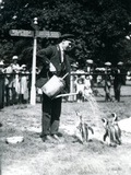 Keeper, Ernie Sceales, Gives Three Penguins a Shower from a Watering Can, London Zoo, 1919 Reproduction photographique par Frederick William Bond