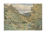 A Road Near Bettws-Y-Coed, 1851 (W/C over Graphite on Paper) Giclee Print by George Price Boyce