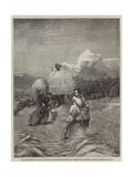 The Barleyfield Giclee Print by George Elgar Hicks
