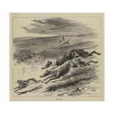 Coursing Reproduction procédé giclée par Harrison William Weir