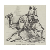 One of Barras' Camel Corps, Raised in Rajpootana Reproduction procédé giclée par Harrison William Weir