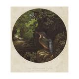 The Kingfisher's Haunt Reproduction procédé giclée par Harrison William Weir