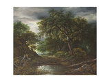Woodland at Sunset with a Traveller and His Dog Giclee Print by Jacob Isaaksz Ruisdael