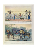 Different Transport in Brazil Giclee Print by Jean Baptiste Debret