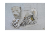 Sketch of Lioness and Cubs from Nicola Pisano's Siena Pulpit Giclee Print by John Ruskin