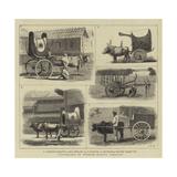 Travelling in Burmah, Native Vehicles Giclee-trykk av John Charles Dollman