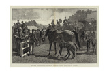 In the Paddock, a Sale of Brood-Mares and their Foals Impressão giclée por John Charlton