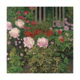 Flowers and Garden Fence; Bluhende Blumen Am Gartenzaun Reproduction procédé giclée par Kolo Moser