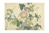 Frog and Morning Glories, C. 1832 Impressão giclée por Katsushika Hokusai