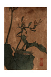 Battainago, Between 1830 and 1844 Ikeda, Eisen 1790-1848 Giclee Print by Keisai Eisen
