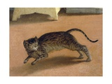 Terrified Cat, Detail from Recanati Annunciation, Ca 1534 Giclee Print by Lorenzo Lotto