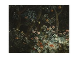 Foliage, Flowers and Birds, 1796 Giclee Print by Philip Reinagle