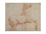 Study of One of the Quirinal Marble Horses, C.1515-17 Reproduction procédé giclée par  Raphael