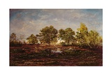 The Pond at Dagneau (Dagan) 1858-60 Giclee Print by Pierre Etienne Theodore Rousseau