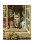 Blinking in the Sun, 1881 Giclee Print by Ralph Hedley