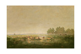Marshland in Les Landes, C.1853 Giclee Print by Pierre Etienne Theodore Rousseau