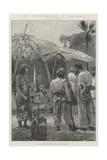 The Insurrection in Colombia Reproduction procédé giclée par Richard Caton Woodville II