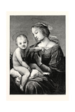 Virgin and Child, an Italian Painter and Architect Reproduction procédé giclée par  Raphael