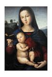 Solly Madonna, C.1502 Reproduction procédé giclée par  Raphael