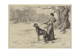 Ware Deer! Reproduction procédé giclée par S.t. Dadd