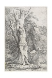 Albert, (Suffering Self-Imposed Penance), 1662-1663 Giclee Print by Salvator Rosa