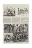 Colonial and Indian Exhibition, Queensland Reproduction procédé giclée par S.t. Dadd