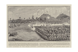 The Fighting in the Niger Country, Surprising the Emir of Lapaie's War Camp Reproduction procédé giclée par S.t. Dadd