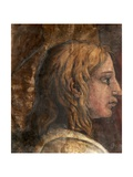 A Head from the Cartoon for the Tapestry of 'The Presentation in the Temple' Giclée-Druck von Tommaso Vincidor