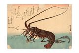 Ise Ebi to Shiba Ebi Lámina giclée por Utagawa Hiroshige