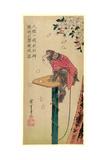 Sakura Ni Tsunagizaru Lámina giclée por Utagawa Hiroshige