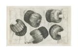 A Muff in Five Views, 1645-1646 Lámina giclée por Wenceslaus Hollar