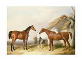Outside the Stable, 1845 Giclee Print by William Barraud