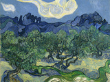 The Olive Trees, 1889 Gicléetryck av Vincent van Gogh