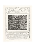 With Dreams Upon My Bed Thou Scarest Me and Affrightest Me with Visions, 1825 Lámina giclée por William Blake
