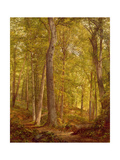 June Woods, Pennsylvania, 1864 Giclee Print by William Trost Richards