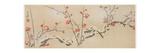 Flowering Plums in Snow, C.1818-29 Lámina giclée por Yamaoka Gepp?