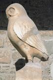 Greek Art. Statue of Owl. Symbol City of Athens. Acropolis Museum. Greece Lámina fotográfica