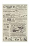 Page of Advertisements Lámina giclée