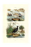 Moss Animal, 1833-39 Reproduction procédé giclée