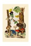 Mushrooms, 1833-39 Giclée-vedos