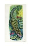 Nile Crocodile Crocodylus Niloticus Impressão giclée
