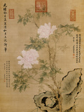 Peonies and Rock, 1893 ジクレープリント