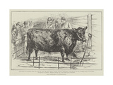 The Cattle-Show at Birmingham Stampa giclée