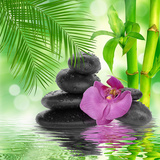 Spa Background - Black Stones and Bamboo on Water Fotografisk trykk av Natalia Merzlyakova