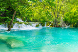 Very Beautiful Sigh of a Green Oasis in Croatia Photographic Print by  siempreverde22