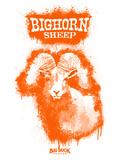 Big Horn Sheep Spray Paint Orange Kunstdrucke von Anthony Salinas