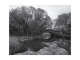 Central Park Bridge 2, NYC Impressão fotográfica por Henri Silberman