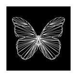 Butterfly Polygon Plakater af Lisa Kroll